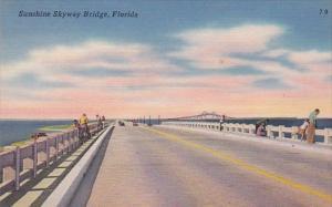 Sunshrine Skyway Bridge Florida