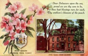 State Flower & Capitol - Delaware, Peach Blossom