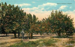 c1910 Agriculture Farming Cherry Orchard Oregon Patton postcard 9545