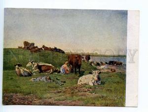 250128 Russia Makovsky herd COWS Vintage GIZ postcard