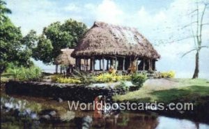 Domestic Idyll, Samoan Woman Fiji, Fijian Unused