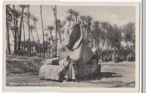Egypt; Memphis, The Alabaster Sphinx RP PPC, Cairo 1935 PMK