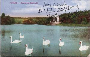 Crefeld Germany Partie im Stadtwald White Swans Krefeld Postcard E38