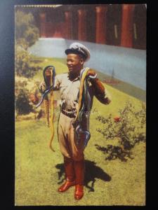 South Africa: Port Elizabeth SNAKE PARK c1950's