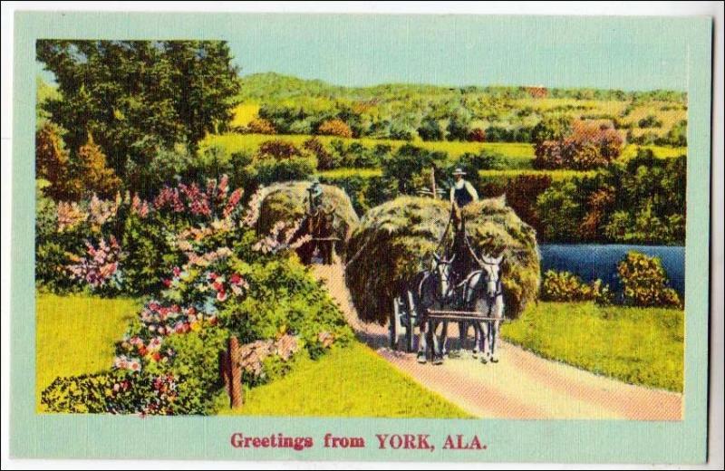 Greetings from York, Alabama