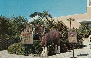 TAMPA, Florida,1982; Horse Statue at Entrance to Busch Gardens