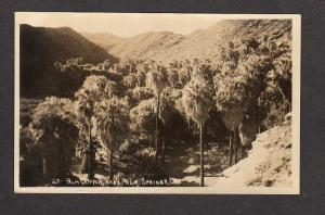 CA Palm Canyon nr Palm Springs California Real Photo Postcard RPPC RP PC Calif