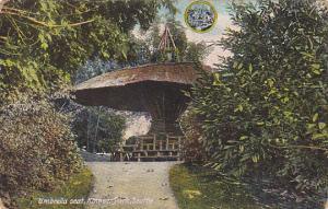 Umbrella Seat Kinnear Park Seattle Washington 1911
