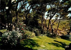 France La Cote D'Azur Jardin dans la Pinede