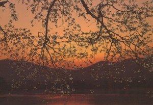 April Water Sunset View  East Mountain Bureau Japan Postcard