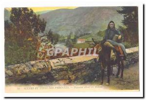 Scenes and Types Pyrenees Old Postcard Peasant going to march TOP (donkey don...