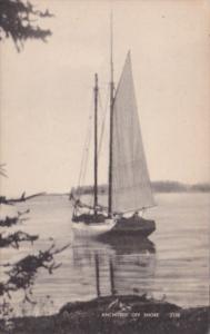 Sailing Anchored Off Shore