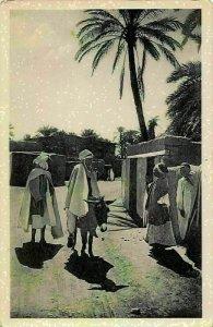 Algeria Biskra Constantine Dans l'oasis Donkey Postcard