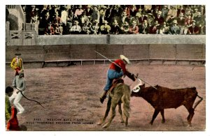 Mexico - Bullfighting. Bull Throwing Picador from Horse