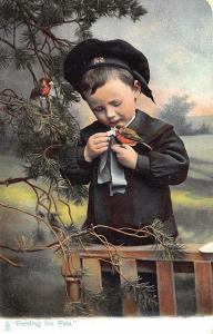Raphael Tuck Feeding The Pets Bird Our Pets Series #1426 Postcard