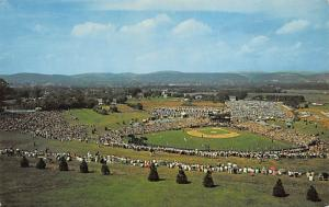 Howard J. Lamade Memorial Field, Penna, USA Baseball Stadium Postcard, Post C...