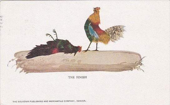 Chickens Roosters The Finish Cock Fight