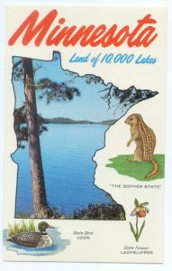 Minnesota Land of 10,000 Lakes Map Card, MN., Chrome