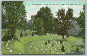 Vicksburg Mississippi~Scene in National Cemetery~Vintage Postcard