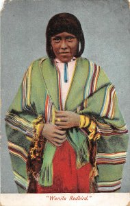 G21/ Native American Indian Postcard c1910 Woman Wanita Redbird 15