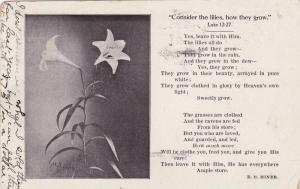 Consider the lilies, how they grow Luke 12:37, Poem by E.B. Miner, PU-1910