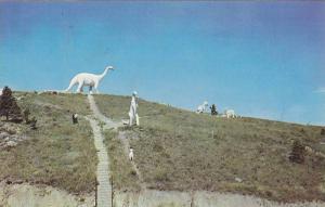 Dinosaur Park in Rapid City, Black Hills of South Dakota,PU-40-60s