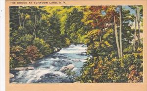 New York The Brook At Schroon Lake 1959
