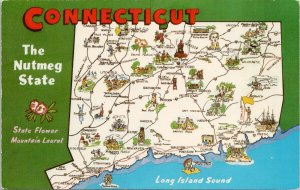 Connecticut Map Large Letter Nutmeg State Mountain Laurel Flower Postcard G45