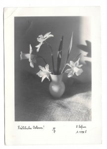 RPPC Happy Easter Frohliche Ostern Vase Daffodils Austria Dr A Defner Postcard