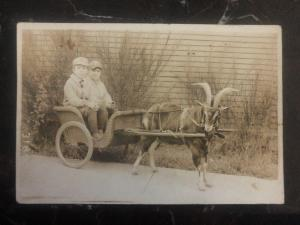 Mint USA RPPC Postcard Twins In A Goat Cart