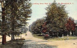 Looking Down Main Street Bloomfield, New York Postcard