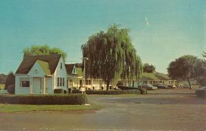 Luray Virginia Page Motel Street View Vintage Postcard K93657