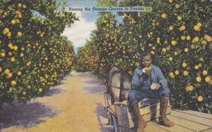 Black Boy Among the Orange Groves in FLORIDA, 30-40s