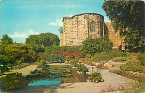 Lily Pond and castle Colchester