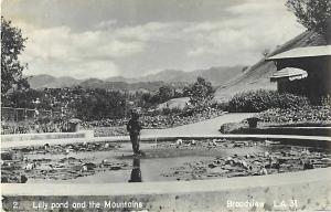 RPPC of Lily Pond & Mountains, Broadview, Los Angeles California CA
