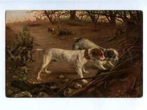 182997 Hare HUNTING with dog TERRIER Vintage postcard