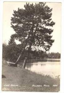 RP, Tree Growing On Bank Of Lake Avalon, Hillman, Michigan, 20-30s