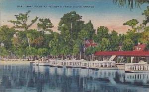 Florida Sliver Spring Boat Docks At Floridas Famed Silver Springs