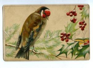 143731 HUNT Bird on Winter Tree NEW YEAR Vintage EMBOSSED PC