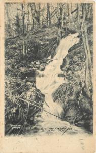Ellenville New York~Big Indian Spring~1905 Albertype B&W Postcard