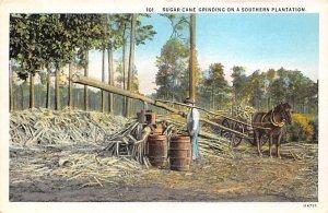 Sugar Cane Grinding on a Southern Plantation Farming Unused