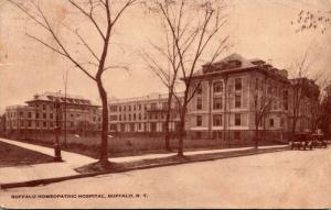 New York Buffalo Homeopathic Hospital 1915