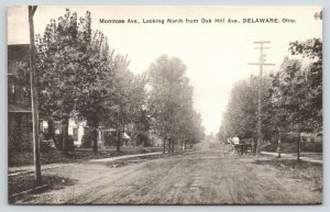Delaware Ohio~Montrose Avenue Homes~North from Oak Hill~Horse Buggy~1910 B&W PC