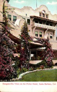California Santa Barbara Bouganvillia Vines On The Potter Hotel
