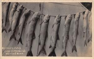 E54/ Warroad Minnesota Photo RPPC Postcard 1920 Lake of the Woods Fish