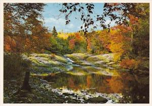 Canada A Placid Pool Autumn In Northern Ontario
