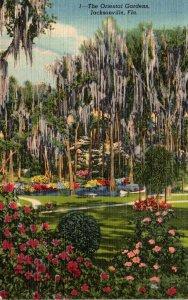 Florida Jacksonville The Oriental Gardens 1953 Curteich