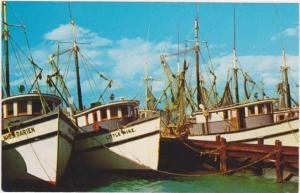 Shrimp Fleet in Key West FL, Florida