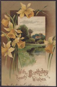 With Hearty Birthday Wishes,Daffodils,Scene