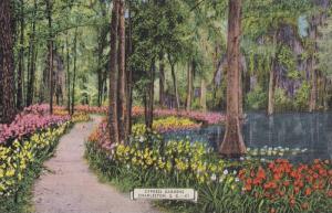 Cypress gardens, Charleston, South Carolina, 30-40s